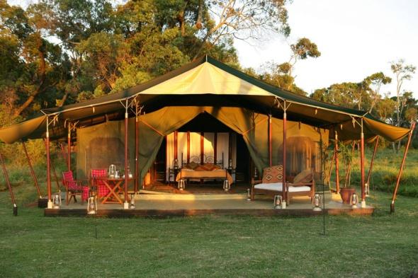 Elephant Pepper Camp in Kenya-the jungle adventure-sohelee