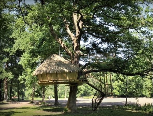 La Cabane Odyssée-staying on a tree or island-sohelee2