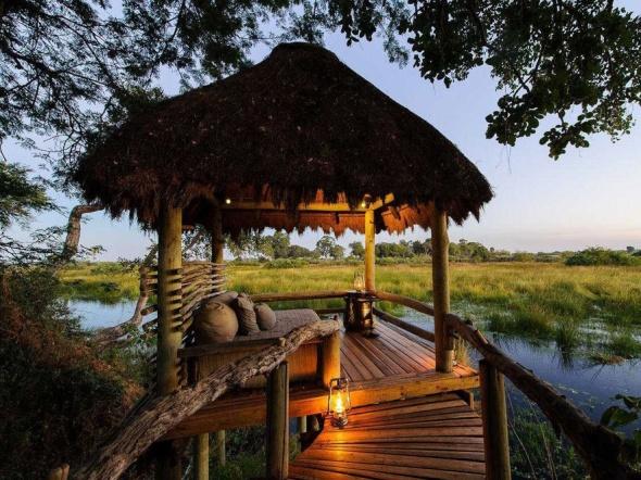 Mombo and Little Mombo in Botswana-the jungle adventure-sohelee