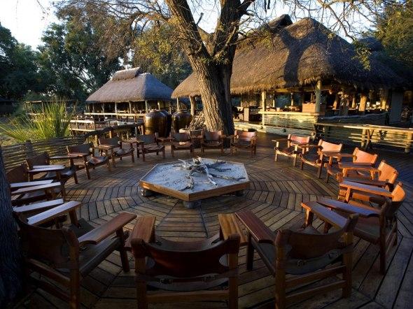 Mombo and Little Mombo in Botswana-the jungle adventure-sohelee3