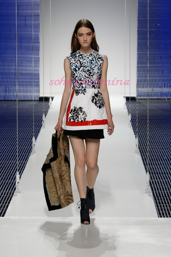 Silhouette 40- Dior Cruise 2015 Collection- Sohelee